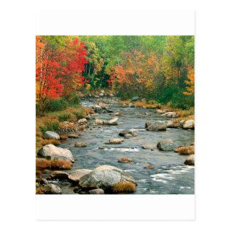Autumn White Mountains New Hampshire Postcard