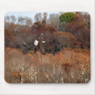 Autumn Wings Mouse Pad