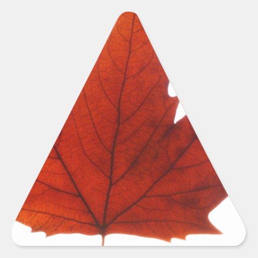 Autumn winter Leafs natural natural  Green Trees E Sticker
