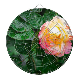 Autumn withered rose with raindrops dartboard
