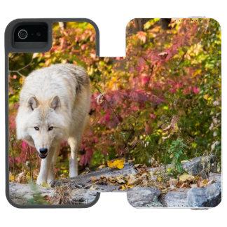 Autumn Wolf Incipio Watson™ iPhone 5 Wallet Case
