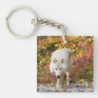 Autumn Wolf Keychain