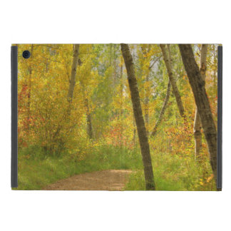 Autumn Woodlands Cover For iPad Mini