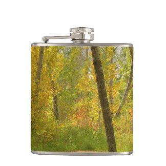 Autumn Woodlands Flasks