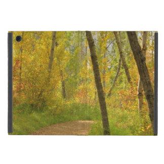 Autumn Woodlands iPad Mini Case