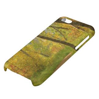 Autumn Woodlands iPhone 5C Cases