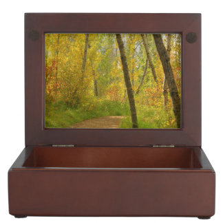 Autumn Woodlands Memory Boxes