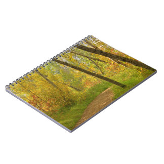 Autumn Woodlands Spiral Notebook