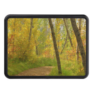 Autumn Woodlands Trailer Hitch Cover