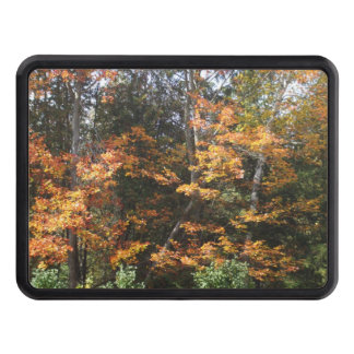 Autumn Woods Trailer Hitch Cover