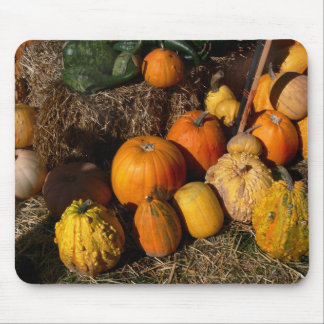 autumnal abundance mouse pad