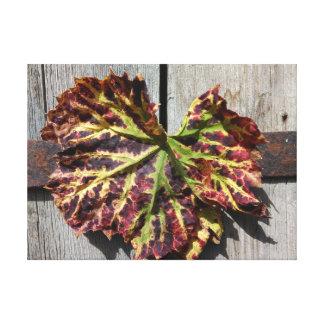 Autumnal Grape Leaf On Wood Canvas Print