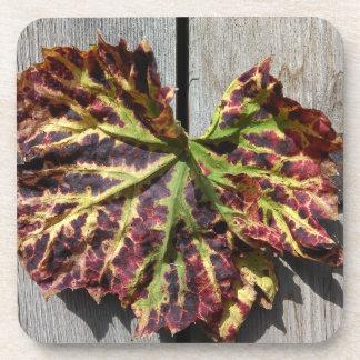 Autumnal Grape Leaf On Wood Coaster