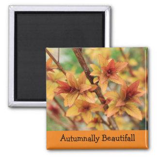 Autumnally beautifall Magnet