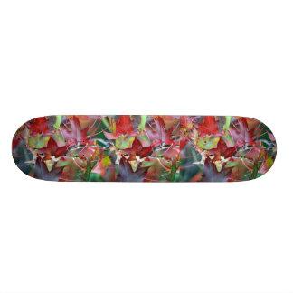 Autumn's gift skateboard decks
