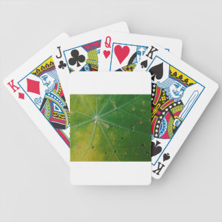 Autumn's Kiss Poker Deck
