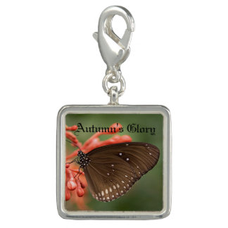 Autumn's Magic Series Butterfly Photo Charms