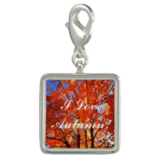 Autumn's Magic Series Tree Photo Charms