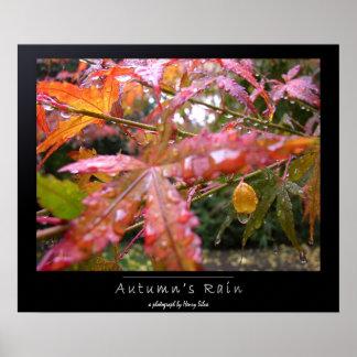 Autumn's Rain Poster