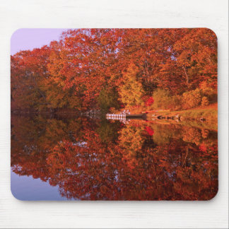 Autumn's Reflection Mouse Pad