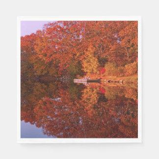 Autumn's Reflection Paper Napkin