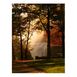 Autumns Waterfall Mist Postcard