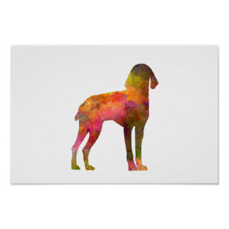 Auvergne Pointer in watercolor Poster