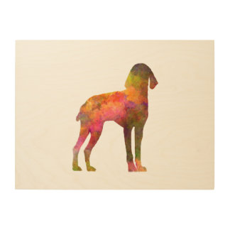 Auvergne Pointer in watercolor Wood Print