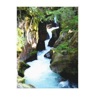 Avalanche Gorge-Glacier National Park Canvas Print