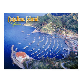 Avalon Bay, Catalina Island, California Postcard