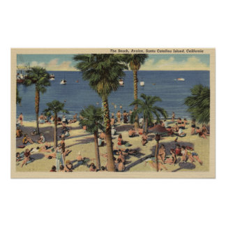 Avalon View of Beach w/ Sunbathers Poster