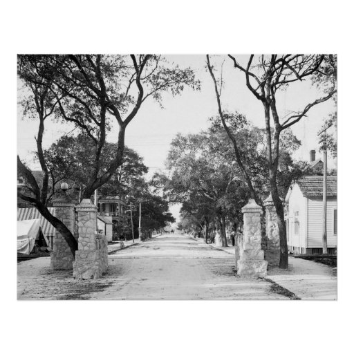 Avenue C, Miami, 1904 Posters