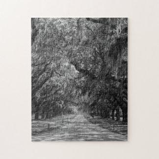 Avenue Of Oaks Grayscale Jigsaw Puzzle