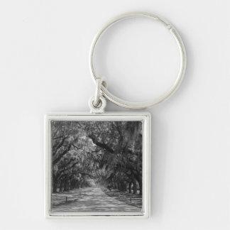Avenue Of Oaks Grayscale Keychain