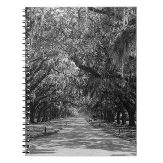 Avenue Of Oaks Grayscale Notebook