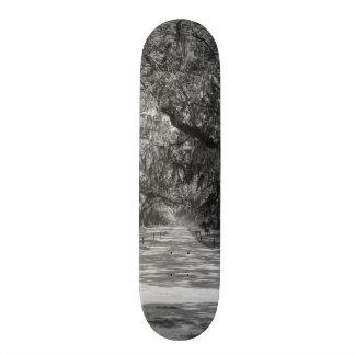 Avenue Of Oaks Grayscale Skateboard Deck