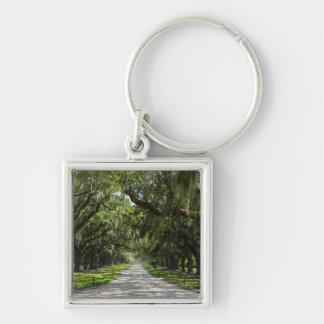 Avenue Of Oaks Keychain