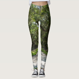 Avenue Of Oaks Leggings