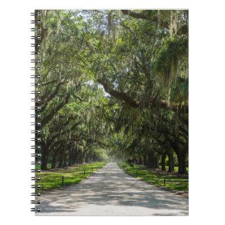 Avenue Of Oaks Spiral Notebook