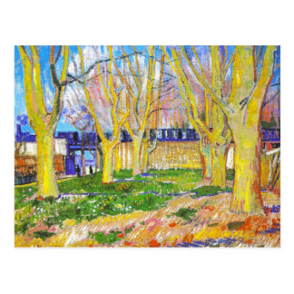 Avenue of Plane Trees near Arles Station by Vincen Postcard
