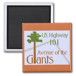 Avenue of the Giants Square Magnet