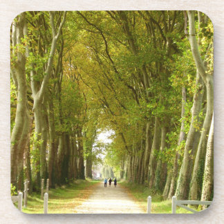 Avenue of Trees Hard Plastic Coasters
