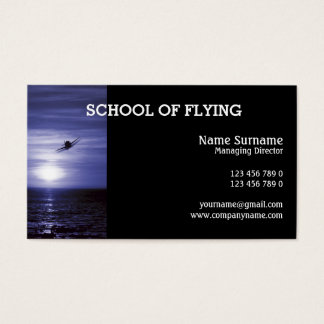 Aviation flying training PERSONALIZE Business Card