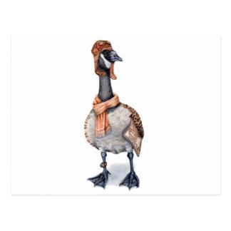 Aviator Goose Postcard