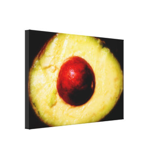 Avocado Gallery Wrapped Canvas
