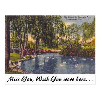 Avondale Park, Birmingham, AL Postcard