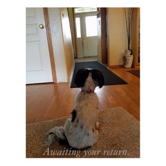Awaiting your return postcard
