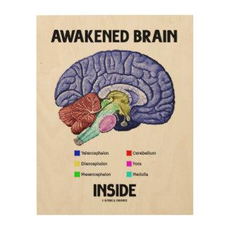 Awakened Brain Inside Brain Anatomy Geek Humor Wood Print