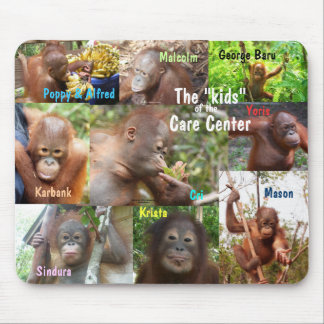 Awesome Apes- Kids at  Wildlife Care Center Mouse Pad
