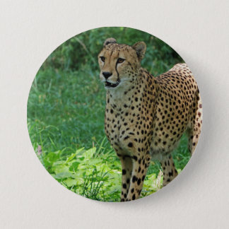 Awesome cheetah 3 inch round button